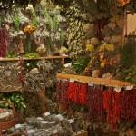Zioła i produkty ziołowe